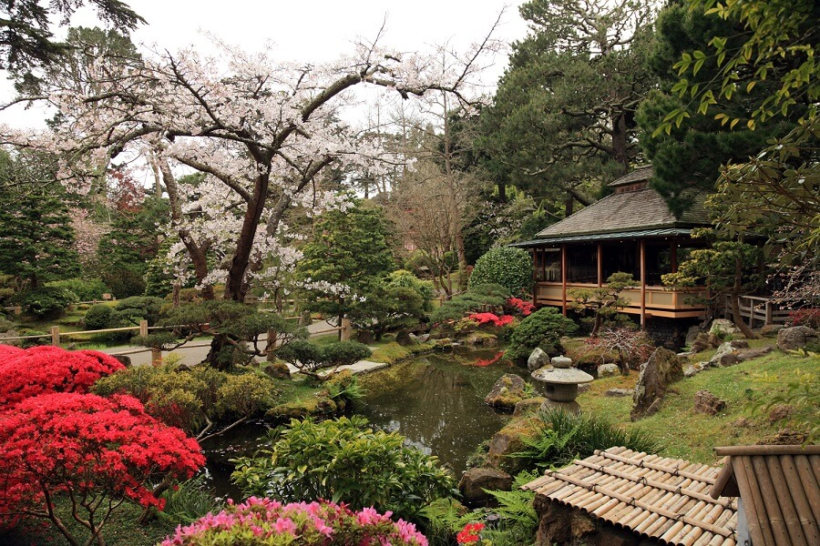 7 Japanese Tea Garden Inspiration Ideas