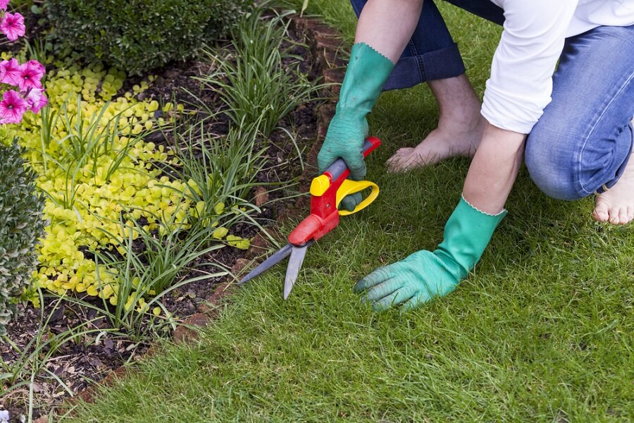 garden edging maintenance