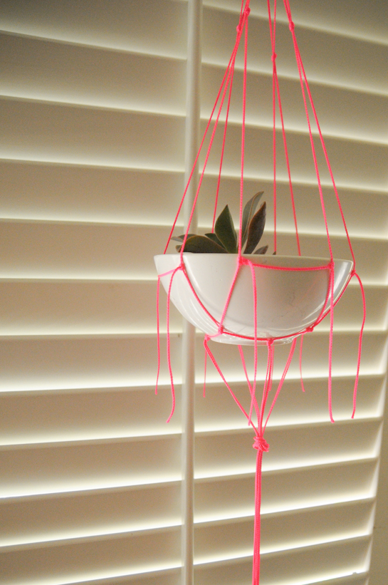 neon macrame plant hanger