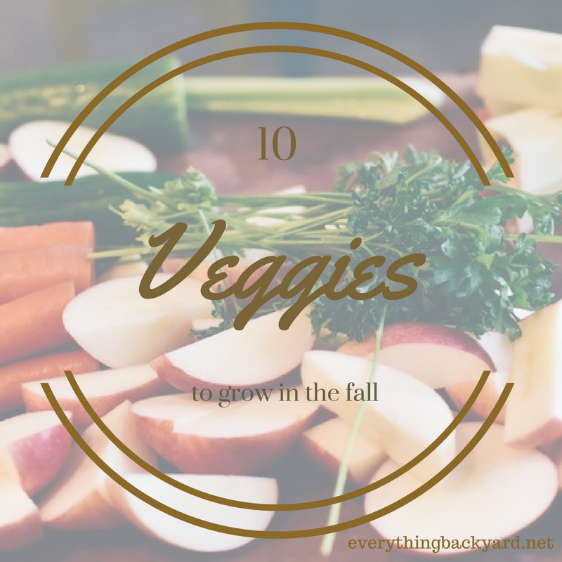 fall vegetables to grow