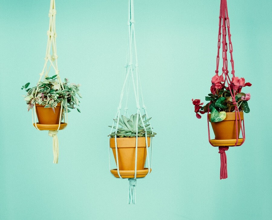 rope plant hanger colorful pots
