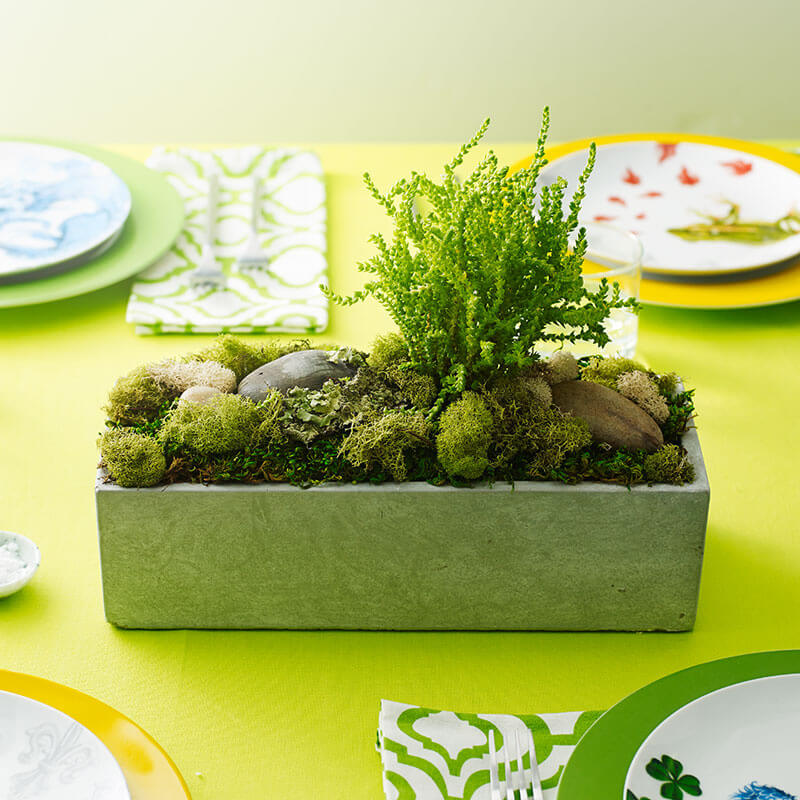 moss centerpiece for a garden party