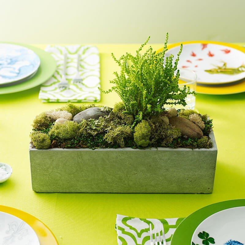 moss centerpiece for a garden party