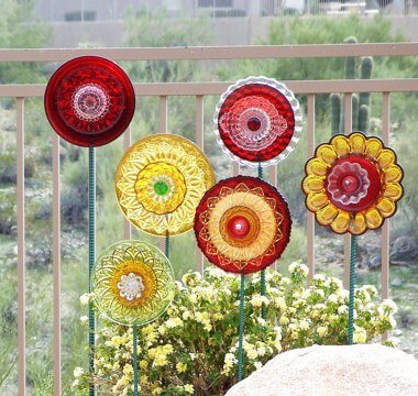 multicolored dish flowers