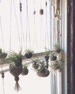 rope plant hanger crochet