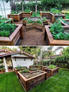 raised vegetable garden shapes