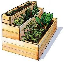 raised vegetable garden steps