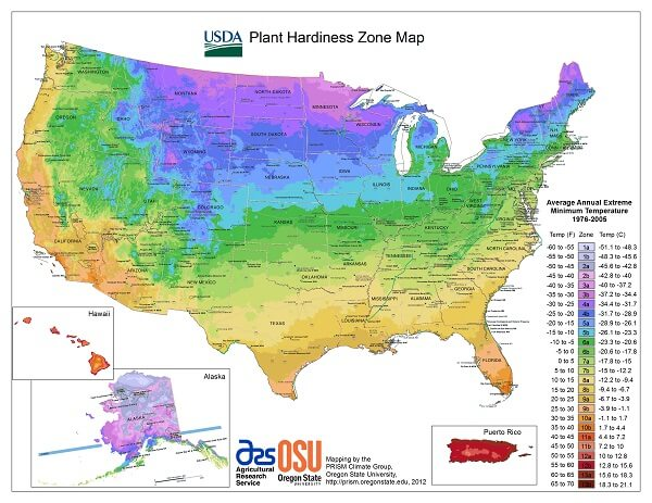 USDA planting zones map