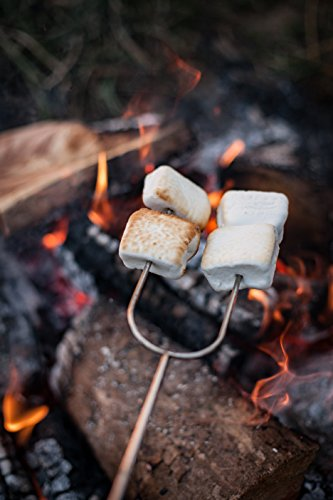 backyard barbecue smores-marshmallows