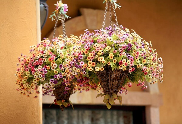 hanging plant hooks with-flowers-in-bloom