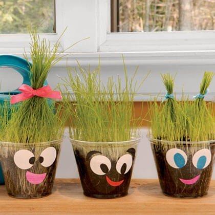 how do plants grow fun project