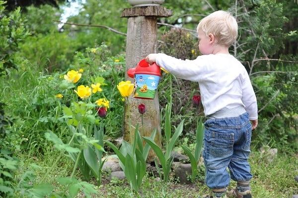 toddler watering