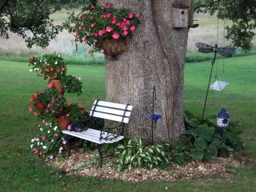 garden arrangements under a tree