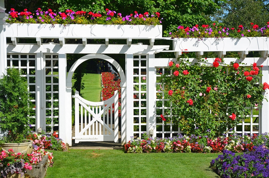 Garden Trellis Made Of White Wood And Supporting Colorful Flowers