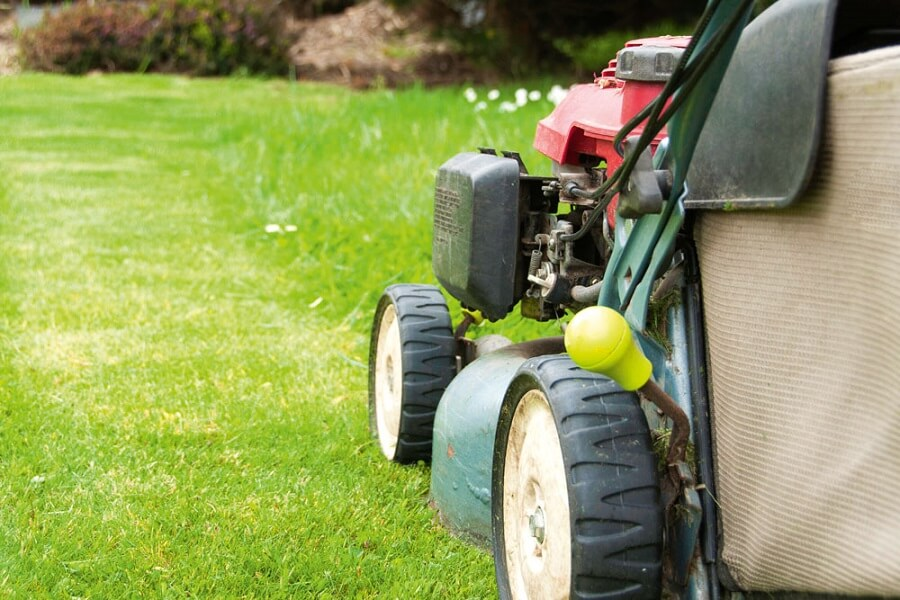 close up of a lawn mower on the grass