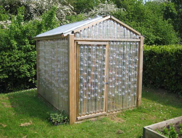 greenhouse made of empty plastic bottles