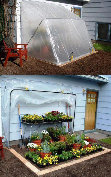 greenhouse whose cover can be pulled back to reveal the plants