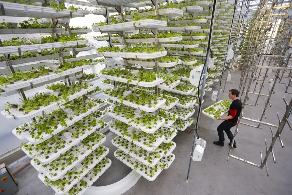 1020verticalfarms01