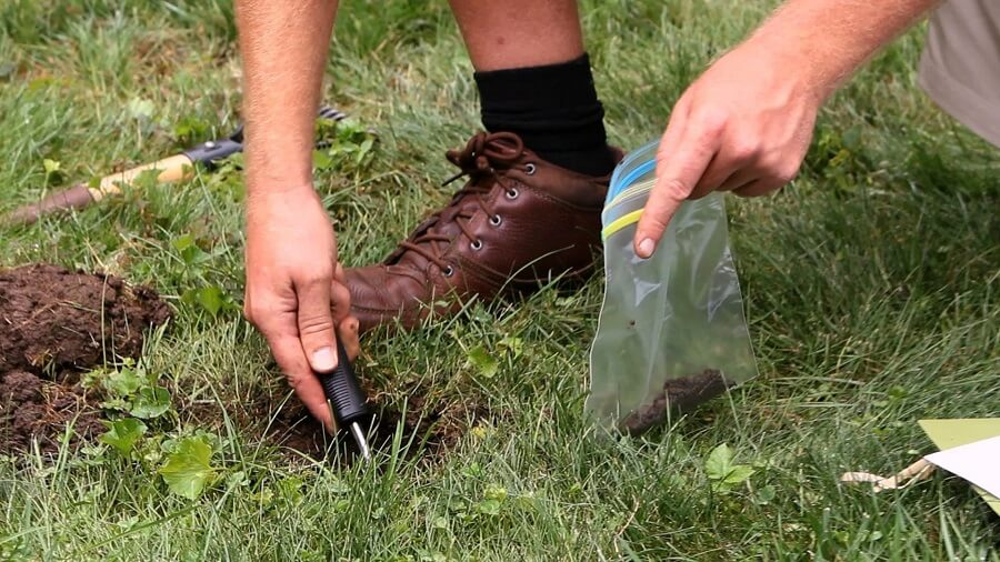 man taking soil sample to test it