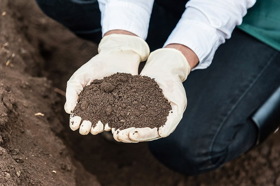 person wearing gloves holding soil in their hands