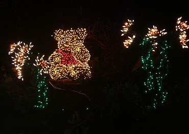 small bear made out of christmas lights