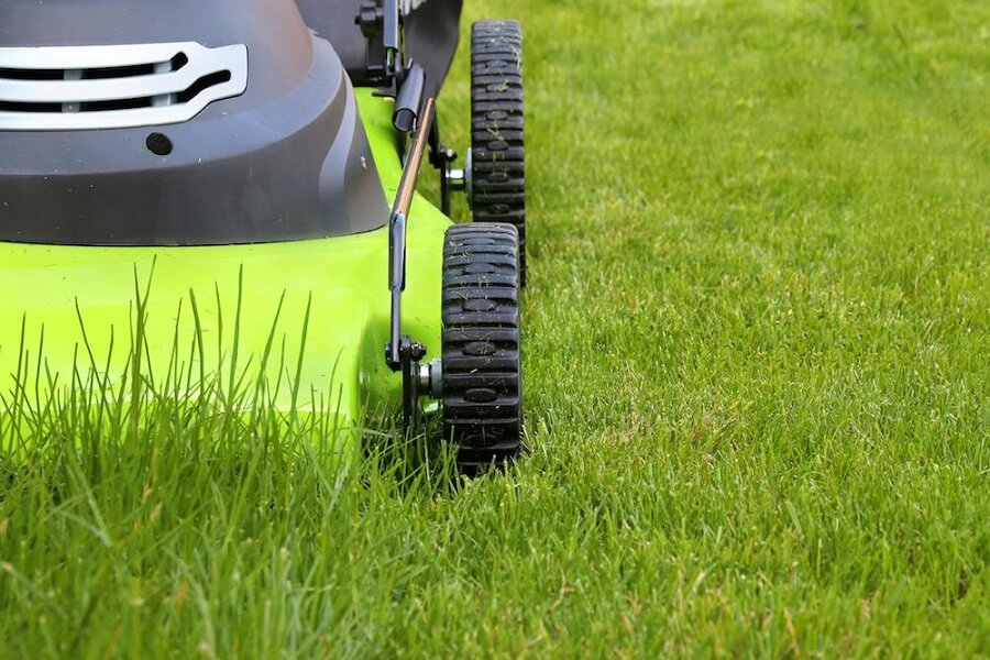 mowing the lawn with a grass mower