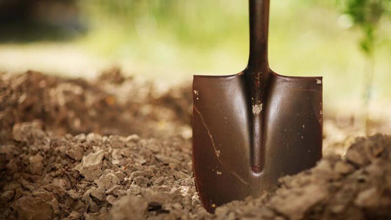 black shovel stuck in the soil