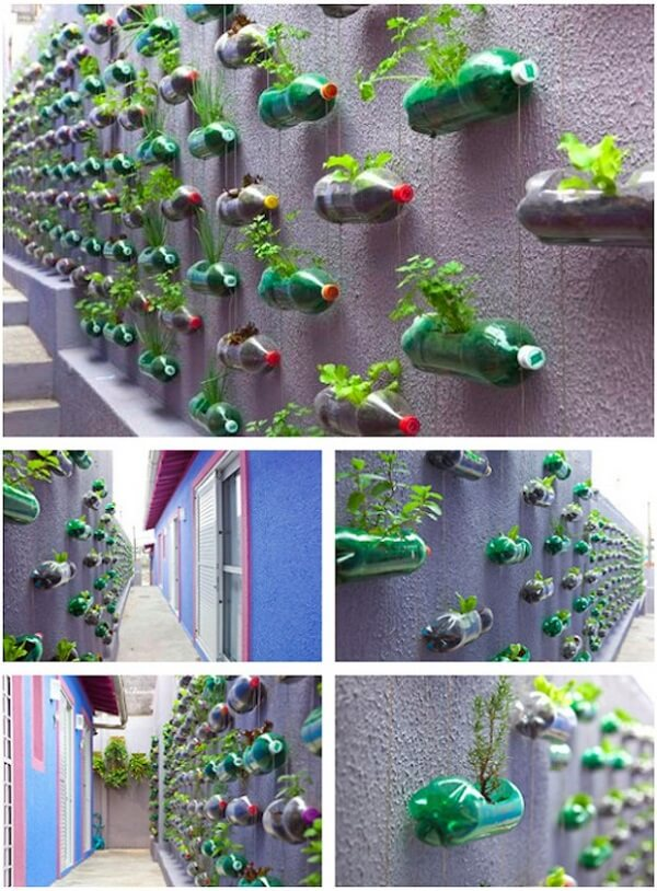 collage showing how to turn plastic bottles into flower pots