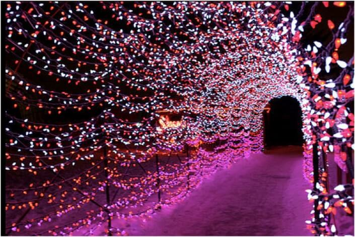 tunnel covered with purple christmas lights