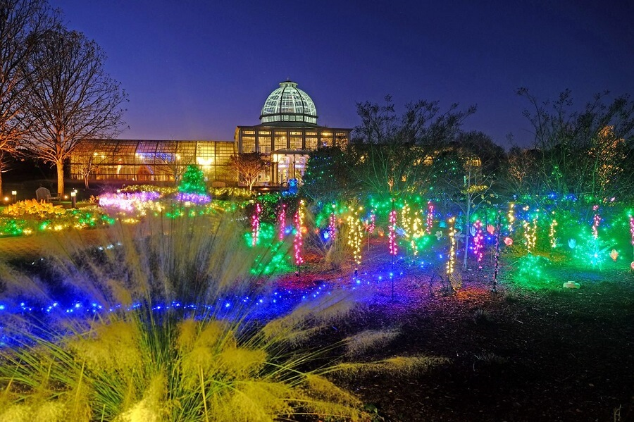 colorful display of Christmas lights at a botanical garden