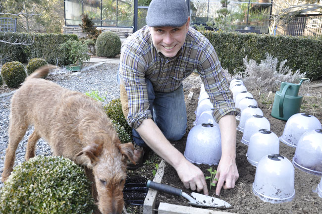 matt mattus gardening with plants
