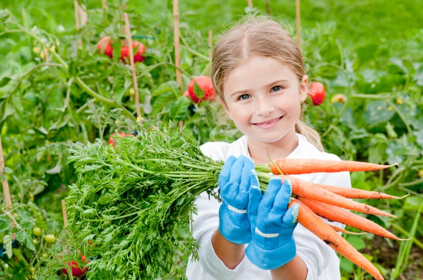 child wearing gloves and holding a bunch of carrots