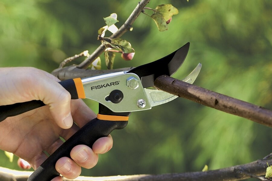 using a pair of pruning shears to cut a branch
