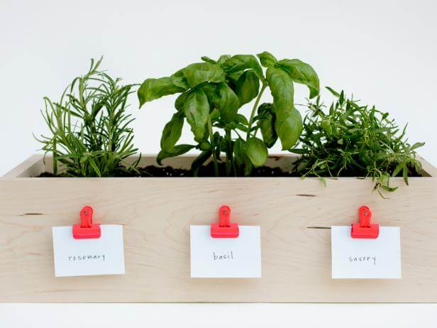 wooden window box with different herbs