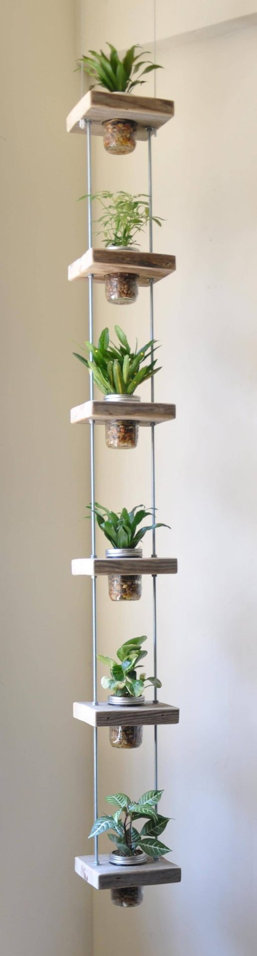 hanging jars with herbs in them