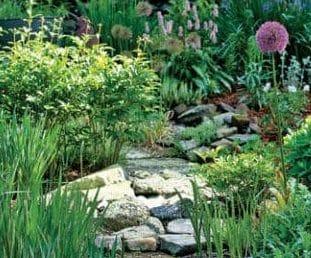 garden path made of stones