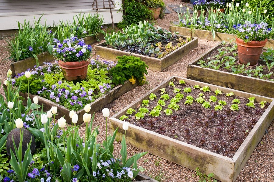 Diy Raised Garden Beds: Ideas And Instructions - Everything Backyard