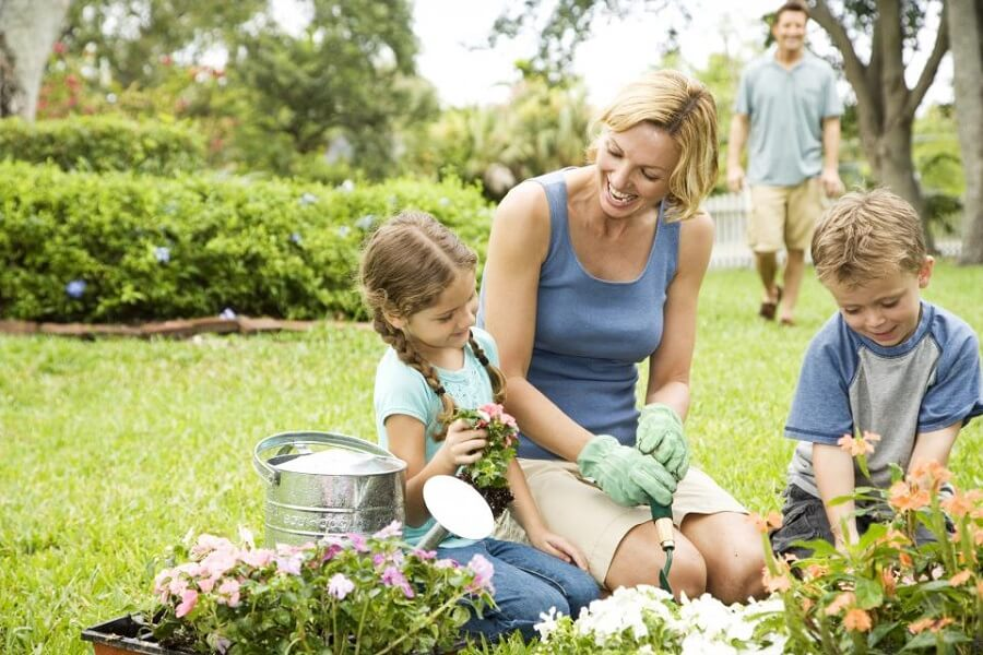 4 Simple Gardening Lesson Plans for Kids – Gardening Lesson Plans