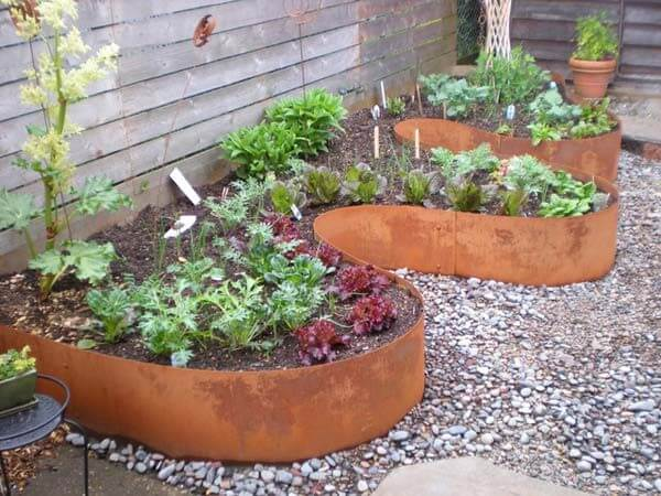 garden bed surrounded by a steel edging