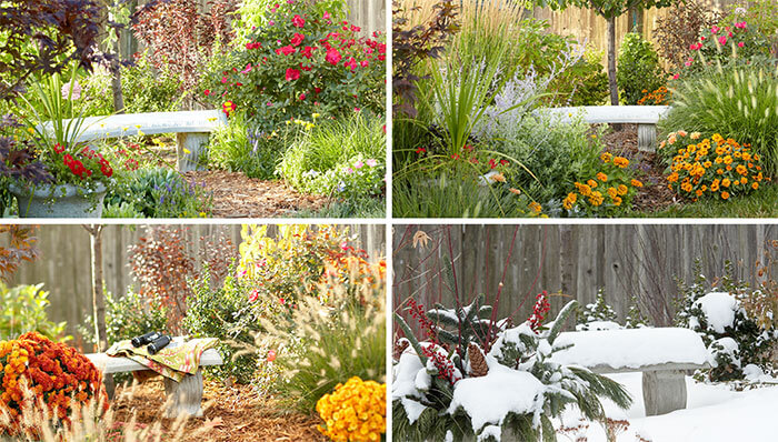 collage of all four seasons in the same garden, gardening lesson plans