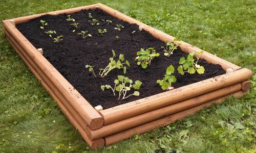 raised garden bed made of landscaping timber