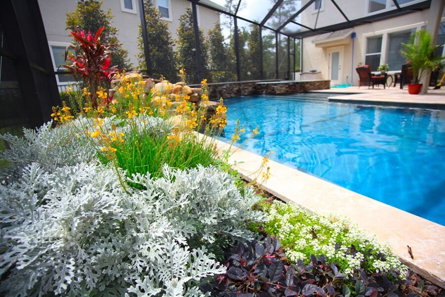 poolscaping, poolscaping with different plants