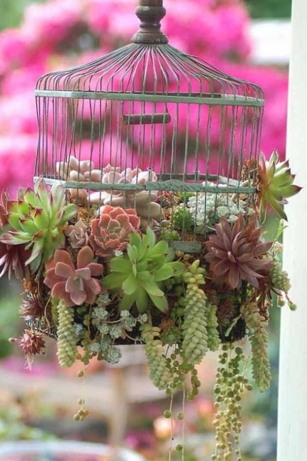 old birdcage used as a planter