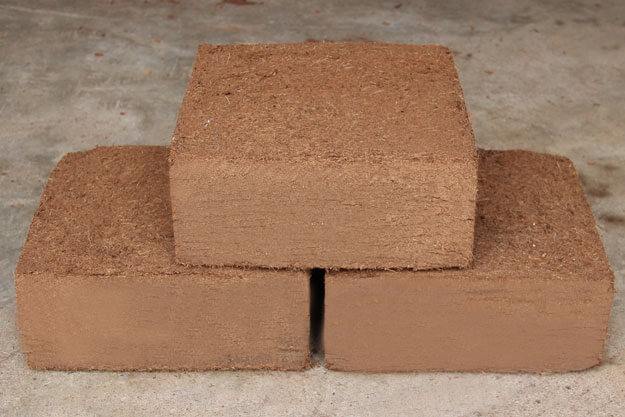 blocks of coco peat, seed starting mix