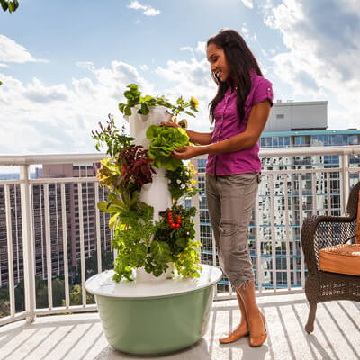 woman harvesting vegetables from a tower garden