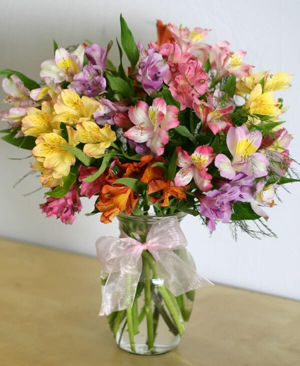 vase filled with peruvian lilies, peruvian lily