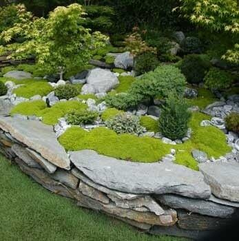 moss and dry stone arrangement