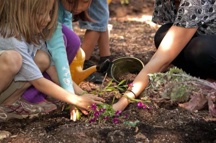 kids gardening, school gardening programs