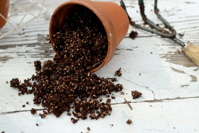 potting soil in a container