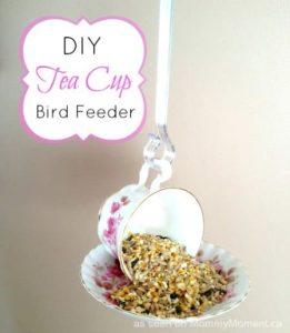 bird feeder made of a teacup